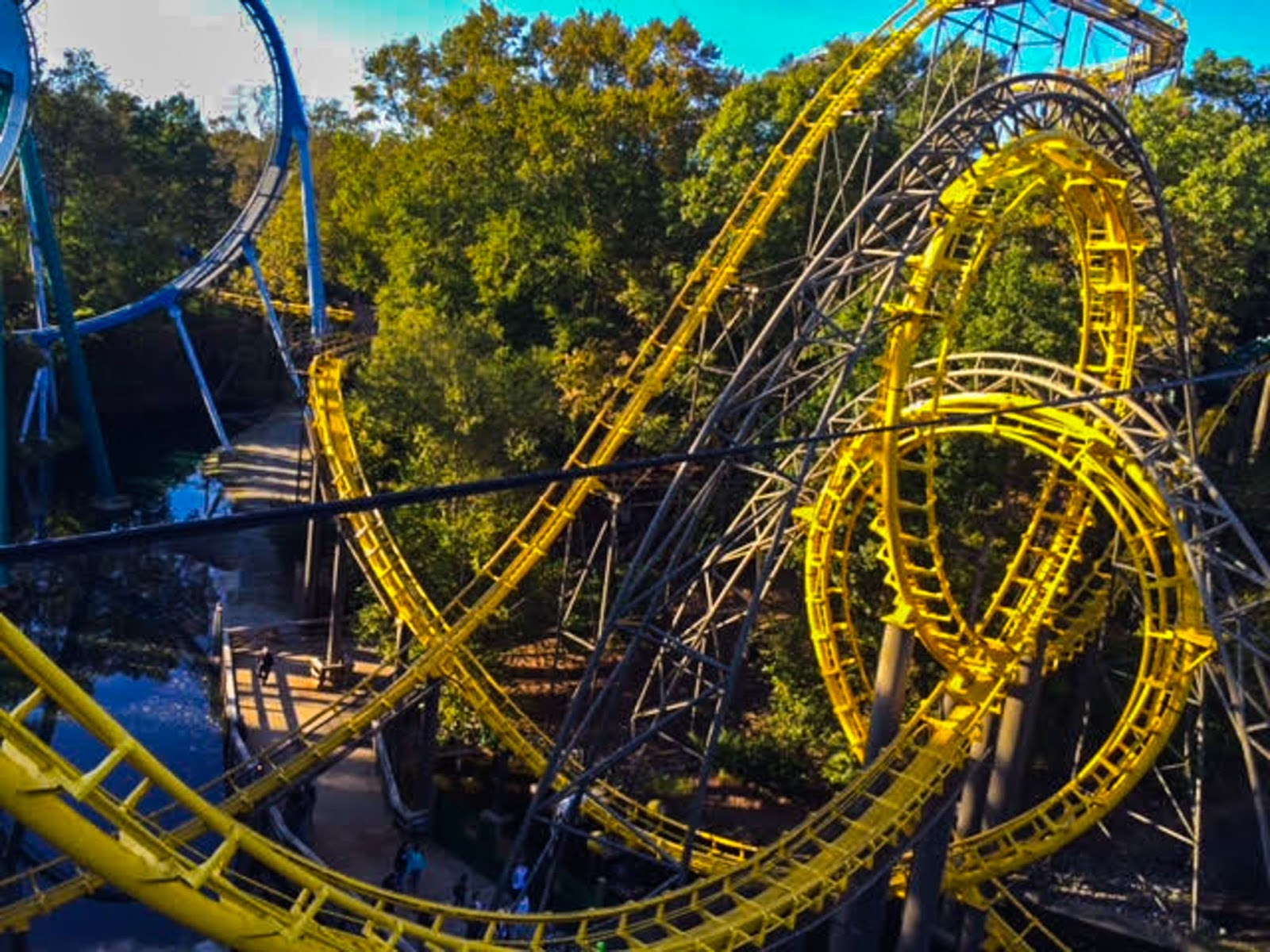 Dorable Busch Gardens Williamsburg Roller Coasters Photo - Brown ...