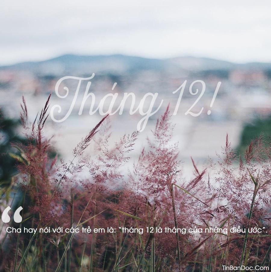 STT Tháng 12, Status Xin Chào & Viết Về Tháng 12 Mùa Đông Rét Mướt