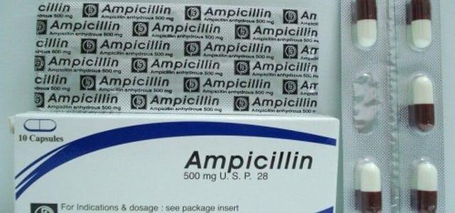 أمبيسيلين Ampicilin كبسولات مضاد حيوى