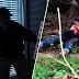 Penyamun mati ditikam pemilik rumah, kes diklasifikasikan sebagai kes bunuh
