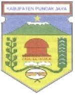 CPNS PEMKAB Kab. Puncak Jaya
