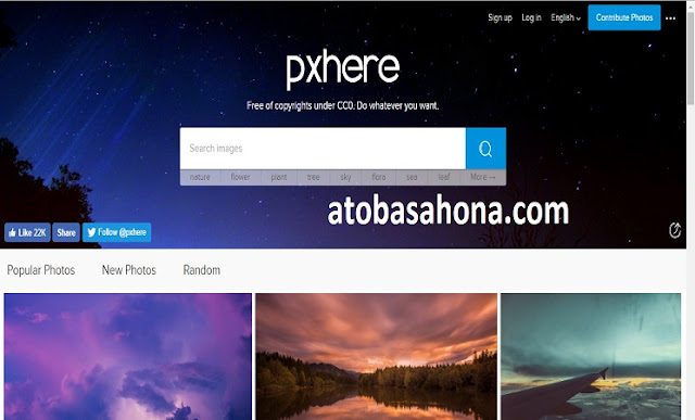 Pxhere : Situs Gambar Gratis Bebas Hak Cipta yang Dapat Digunakan