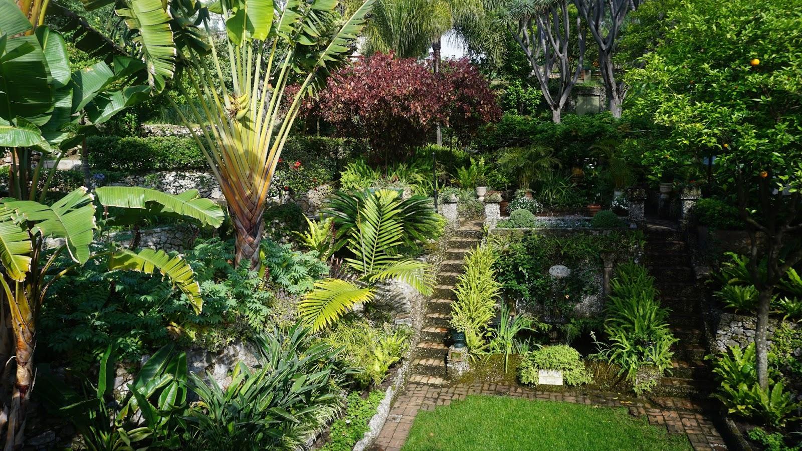 Ogród botaniczny Alameda na Gibraltarze, Alameda, gibraltar