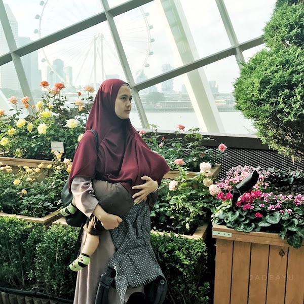 Perjalanan Menyusui Semakin Menyenangkan dengan Kehadiran Baby Hukiyang sudah bersertifikasi Halal