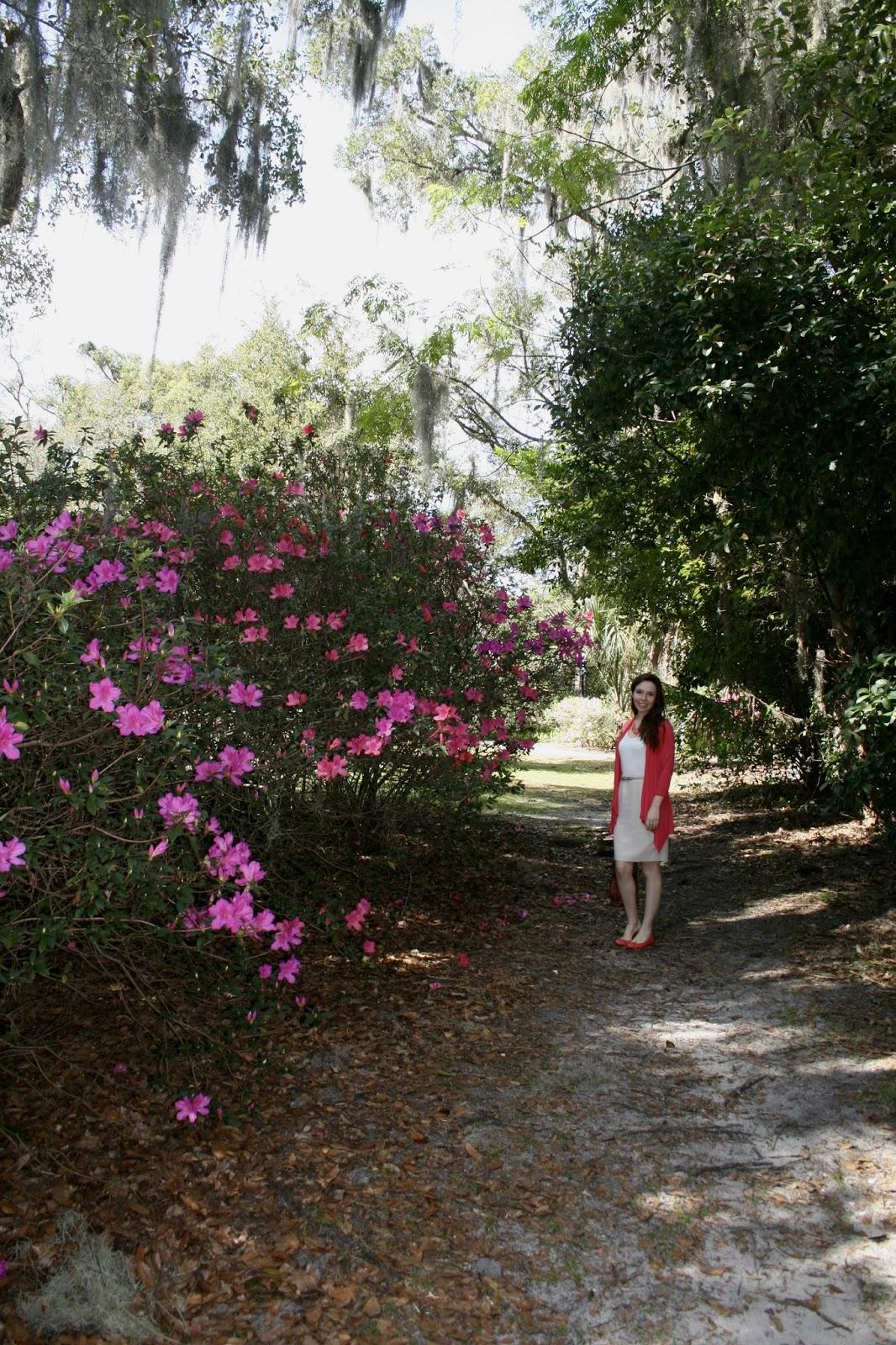 Amy S Creative Pursuits Mead Botanical Gardens