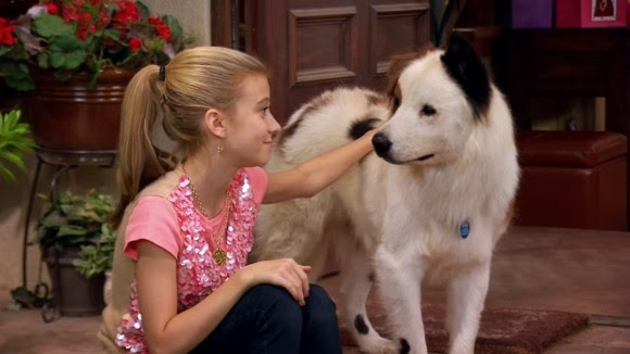Evan and Lauren's Cool Blog: 11/1/13: Dog With a Blog New ...