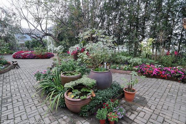 《台中.新社》千樺花園|森林中的玻璃屋|法國料理|四季都可賞花|新社花海旁
