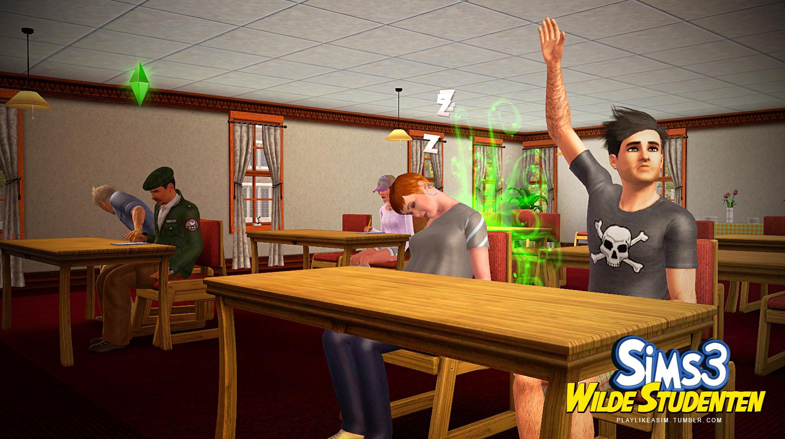 Sims 3 Lehrer