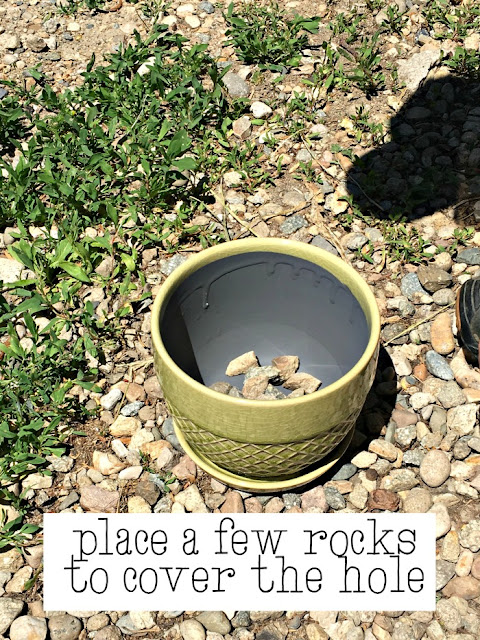 creating drainage for succulent plants in flowerpots