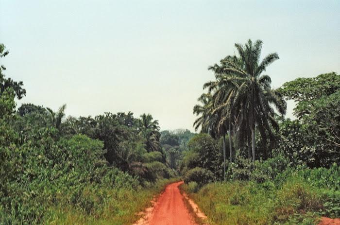RDC, Zaïre, Kivu, Butembo, © L. Gigout, 1991