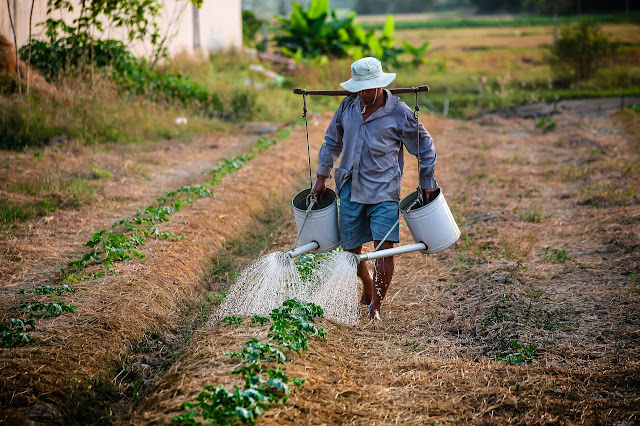 PM Kisaan Samman Nidhi Yojna 2019-kisan scheme @ 6000 per month for farmer