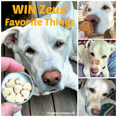 Win Some of Zeus' Favorite Things In Honor of What Would Have Been His 15th Birthday! #dogtreats #dogtoys #CelebrateLife #InHonorofZeus #doggiveaway #Chewy #LapdogCreations #dogbirthday ©LapdogCreations