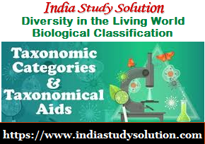 https://www.indiastudysolution.com