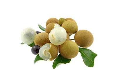 Longan (Long Nhãn) specialties of Vietnam