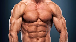How to Gain Muscle Mass