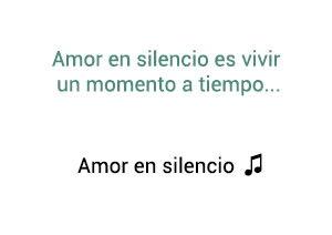 Marco Antonio Solís Los Bukis Amor En Silencio significado de la canción.