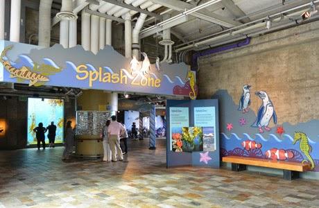 The_Monterey_Bay_Aquarium