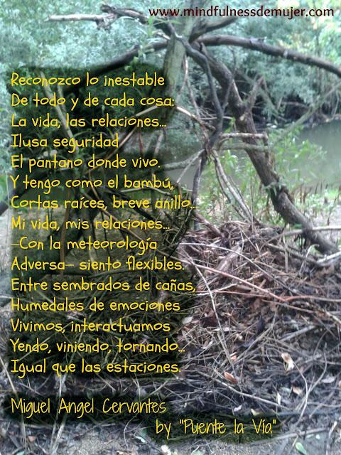 blogdepoesia-poesia-miguel-angel-cervantes-inestabilidad