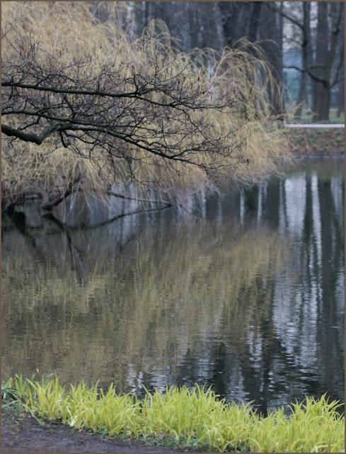 park Łazienki Królewskie