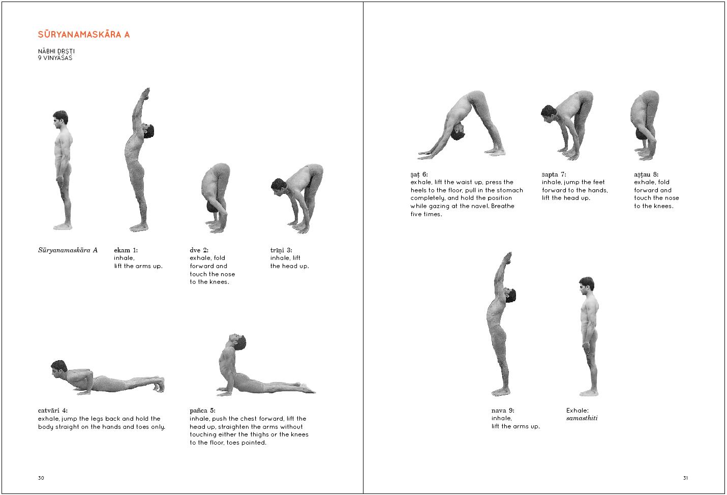 Krishnamacharya's Mysore Yoga...at home : June 2013