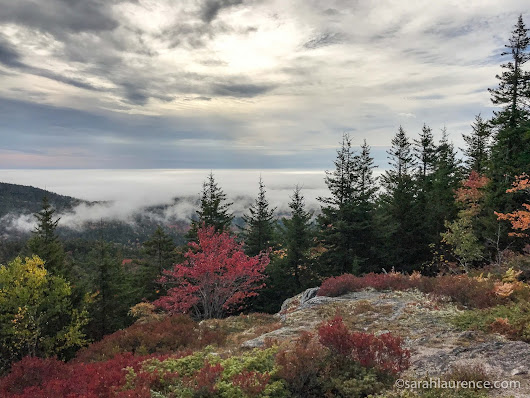 Acadia National Park: Beech Mountain & Bar Harbor