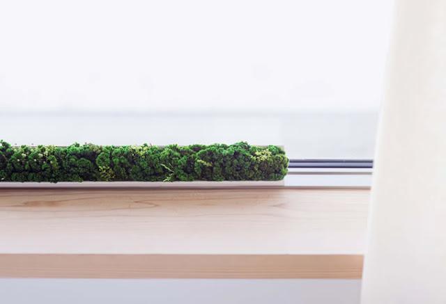 ちさな森を作ることができるアイテム。ACCENT GREEN【i】