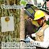 FloresCast #4 - Inventário Florestal - Entrevista com o Prof. Dr. Carlos Sanquetta