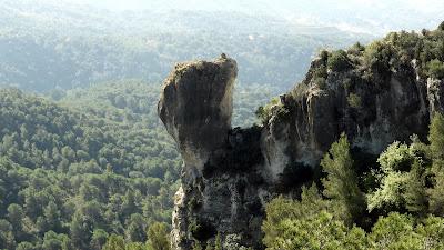 Roca Llarga, Els Mollons