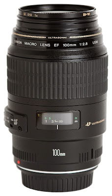 Canon EF 100mm f/2.8 Macro USM Lens: Links to professional / consumer reviews