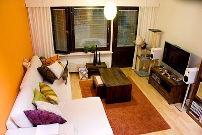 Apartment Living Room Design Ideas If You Ve Just Moved To A New And Want Have Diffe Look Of For Your