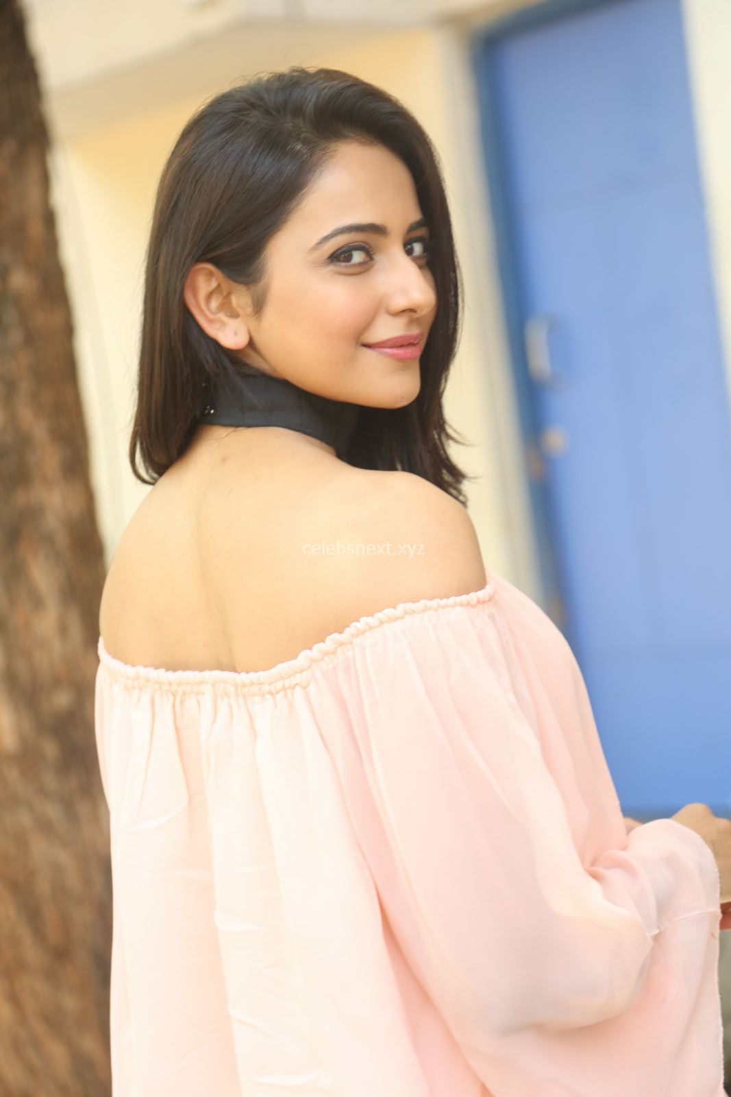 Rakul Preet Singh in lovely Pink Crop Top and Black Trousers at Jaya Janaki Nayaka success meet ~ CelebsNext Exclusive Celebrities Galleries