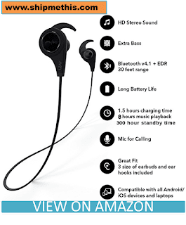 Leaf Ear Wireless Bluetooth Earphones with Mic and Deep Bass (Carbon Black) Review