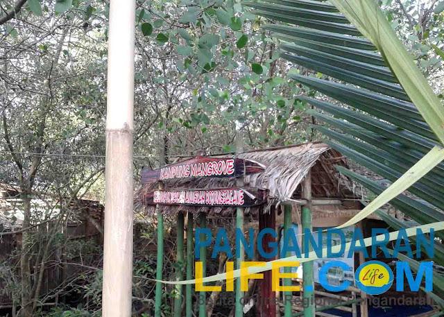 rumah kampung mangrove