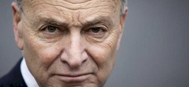 Schumer likes 'independent' judiciary, except when it's 'partisan'