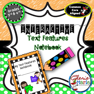 Interactive Text Feature Notebook