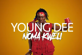 VIDEO| Young Dee - noma kweli | [official Video]