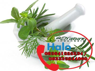 Obat Herbal Mengatasi Sipilis