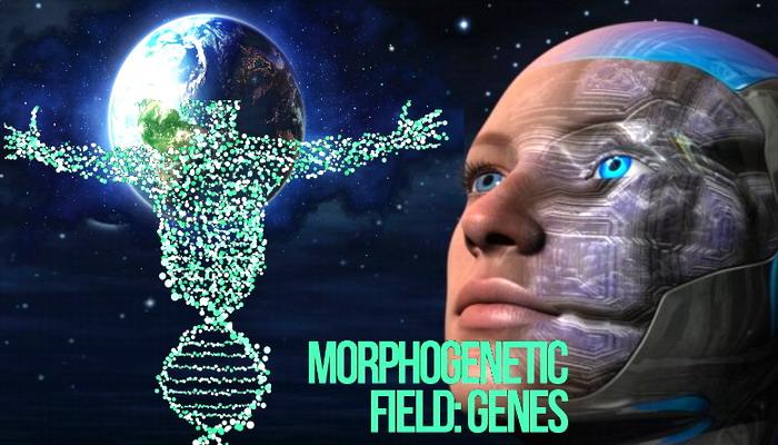 La locura estadounidense reina mientras la enfermedad más destructiva y la IA marcan el comienzo de los tiempos finales