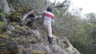 hutanlumut Ekspedisi Meraba Sipirok ke Kawasan Aek Bariba
