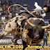 Rodeio Em 2018 - Agenda Maio 2018 De Todos Os Rodeios