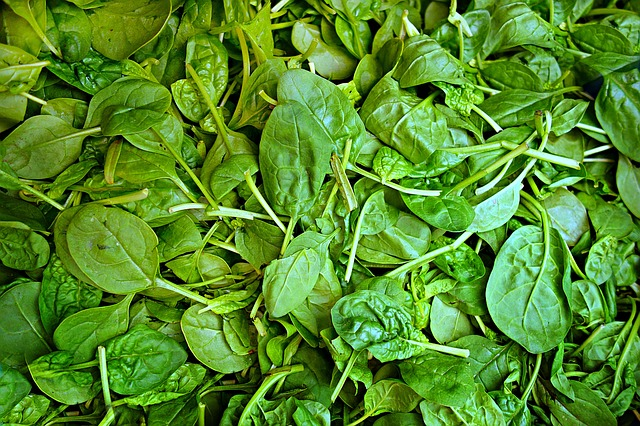 Anti-Aging - A Cancer Fighter and a Cardio Helper - Could Spinach Be the Answer?