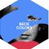 """Beck apresenta clipe para a faixa título do novo álbum """"Colors"""""""