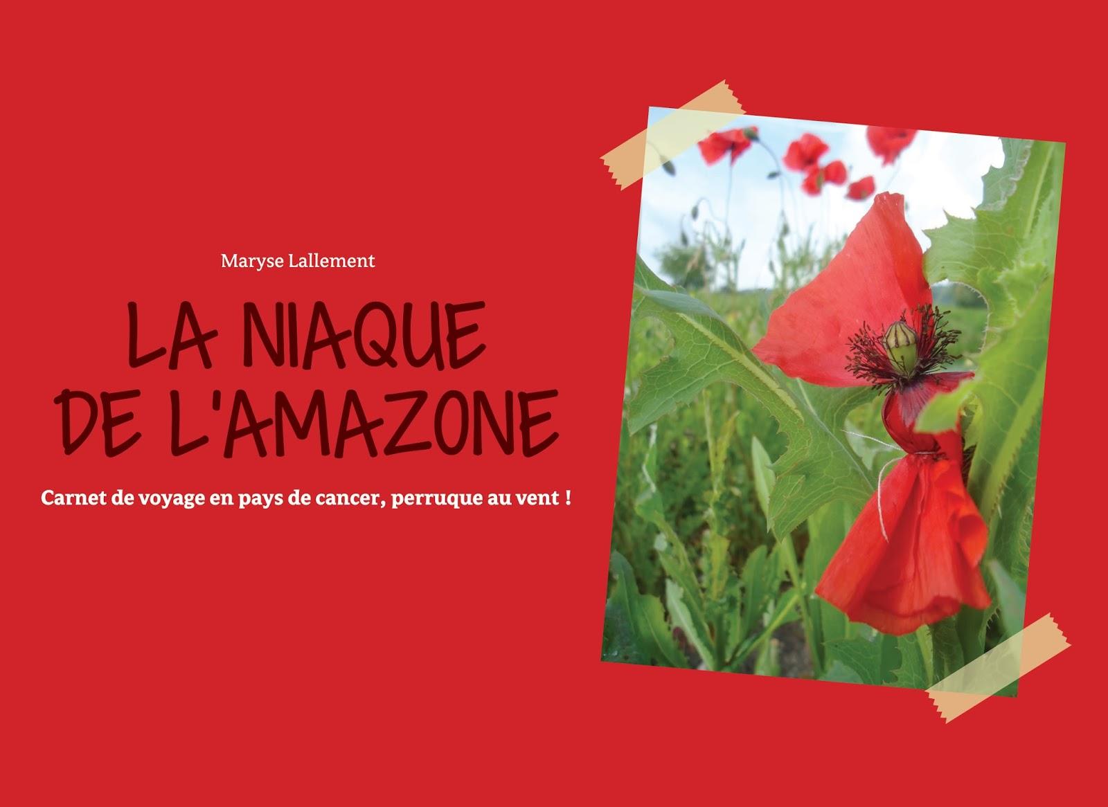 La Niaque De L Amazone Le Livre
