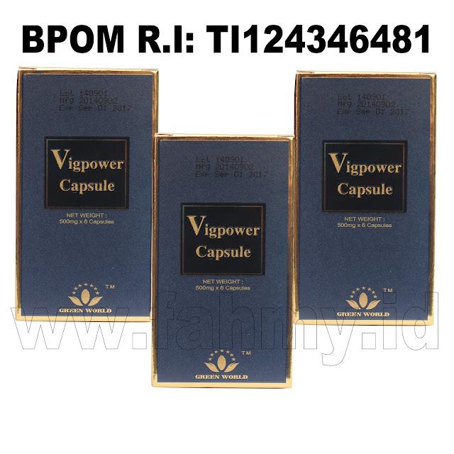 Obat Herbal Vigpower Capsule
