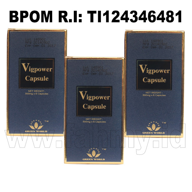 Obat Herbal Vigpower Capsule