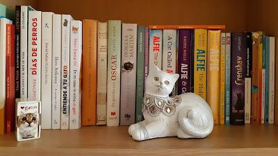 libros-gatos-gata-rassel