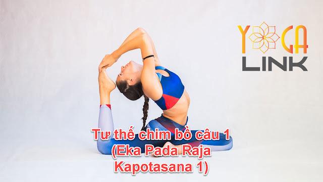 Mỗi ngày một tư thế Yoga || 56 Tư thế chim bồ câu 1