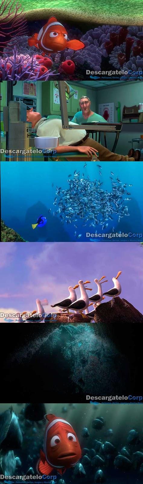 Buscando a Nemo HD 1080p Latino