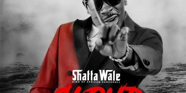 Shatta Wale - Feel So Stupid Video