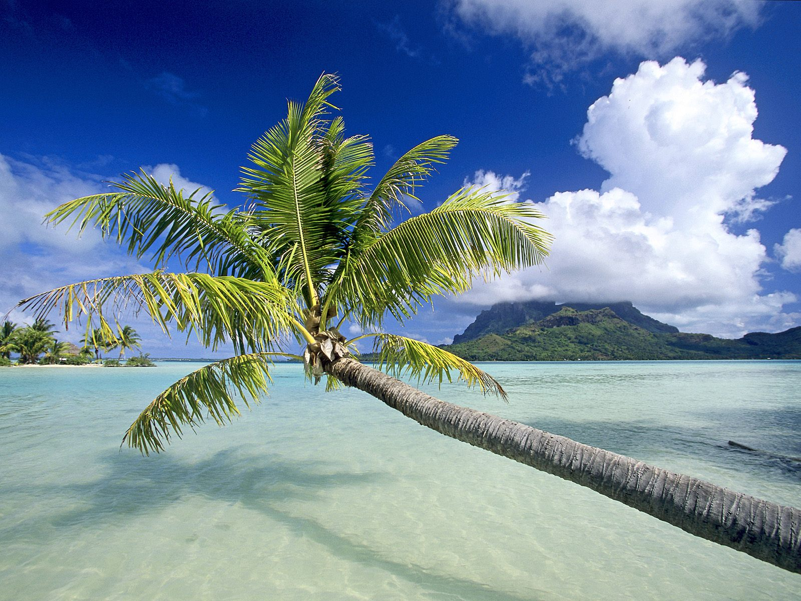 Hd Tropical Island Beach Paradise Wallpapers And Backgrounds: World Visits: Tropical Island In Germany Cool Photos